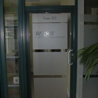 example of privacy vinyl